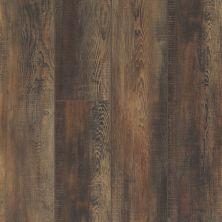 Shaw Floors Vinyl Residential Pearsoll Plus Orso 00794_HSS49
