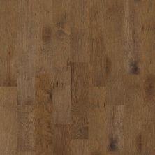 Shaw Floors Shaw Hardwoods Ritter Vintage 07016_HSS69