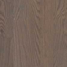 Shaw Floors Home Fn Gold Hardwood Family Reunion 3.25 Weathered 00543_HW425