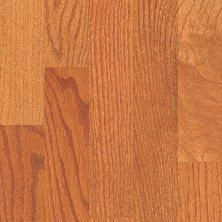 Shaw Floors Home Fn Gold Hardwood Family Reunion 3.25 Gunstock 00609_HW425
