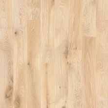 Shaw Floors Home Fn Gold Hardwood Kingston Oak Tapestry 00146_HW485