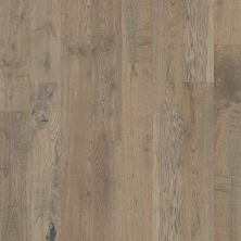 Shaw Floors Home Fn Gold Hardwood Kingston Oak Armory 00508_HW485