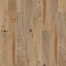 Shaw Floors Home Fn Gold Hardwood Kingston Oak Chatelaine 01010_HW485