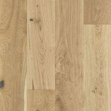Shaw Floors Home Fn Gold Hardwood Kingston Oak Dynasty 02047_HW485