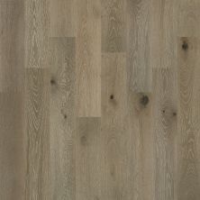 Shaw Floors Home Fn Gold Hardwood Kingston Oak Palisade 05022_HW485