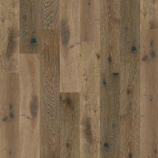 Shaw Floors Home Fn Gold Hardwood Kingston Oak Baroque 05031_HW485