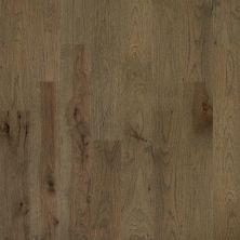 Shaw Floors Home Fn Gold Hardwood Kingston Hickory Romanesque 07018_HW486