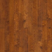Shaw Floors Home Fn Gold Hardwood Delray Burnside 00627_HW493