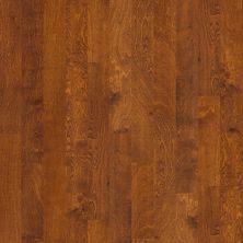 Shaw Floors Home Fn Gold Hardwood Delray Burnside 00627_HW493
