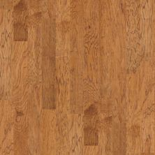 Shaw Floors Home Fn Gold Hardwood Garden Glen Summer House 00267_HW512