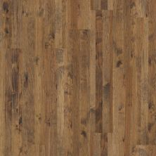 Shaw Floors Home Fn Gold Hardwood Las Cruces Grandview 00148_HW513