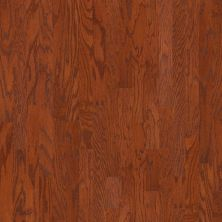 Shaw Floors Home Fn Gold Hardwood Rosebrooke Oak Cherry 00947_HW515