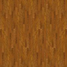 Shaw Floors Home Fn Gold Hardwood Palazzo Piazza 00298_HW517