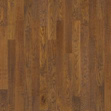 Shaw Floors Home Fn Gold Hardwood Valley View Copper 00272_HW519