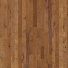 Shaw Floors Home Fn Gold Hardwood Freedom Trail 00229_HW563