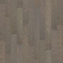 Shaw Floors Duras Hardwood All In II 5 Weathered 00543_HW582