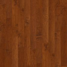 Shaw Floors Duras Hardwood Gulf Breeze Burnside 00627_HW591