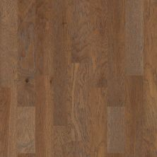 Shaw Floors Home Fn Gold Hardwood Kings Canyon 2 – 6 3/8 Cinnamon 02000_HW601