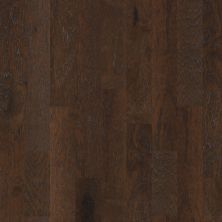 Shaw Floors Home Fn Gold Hardwood Kings Canyon 2 – 6 3/8 Clove 09000_HW601