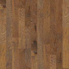 Shaw Floors Home Fn Gold Hardwood Leesburg 2-5″ Cinnamon 02000_HW606