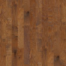 Shaw Floors Home Fn Gold Hardwood Leesburg 2 – Mixed Warm Sunset 00879_HW619