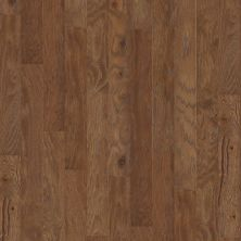 Shaw Floors Home Fn Gold Hardwood Kings Canyon 2 – 5 Cinnamon 02000_HW622