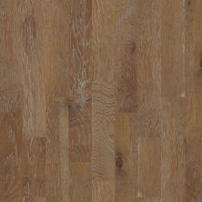 Shaw Floors Duras Hardwood Hampton Court 2 Brey 02004_HW624
