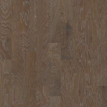 Shaw Floors Duras Hardwood Hampton Court 2 Eton 07004_HW624