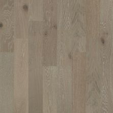 Shaw Floors Home Fn Gold Hardwood Aston Hall Viceroy 09010_HW637