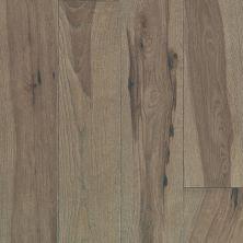 Shaw Floors Duras Hardwood Impressions Ash Instinct 07028_HW659