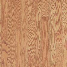 Shaw Floors Home Fn Gold Hardwood Rhapsody 3 Butterscotch 00841_HW674