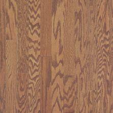 Shaw Floors Home Fn Gold Hardwood Rhapsody 5 Gunstock 00780_HW675