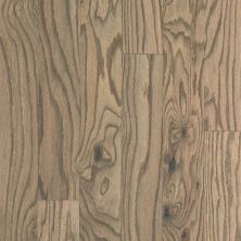 Shaw Floors Duras Hardwood Essence Oak Art Deco 02028_HW696