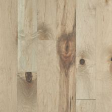 Shaw Floors Duras Hardwood Essence Maple Deco 02029_HW697