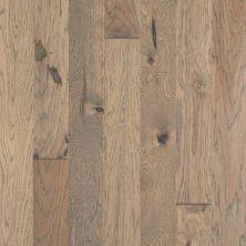 Shaw Floors Home Fn Gold Hardwood Flat Iron 5 Jute 02052_HW711