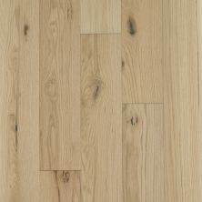 Shaw Floors Home Fn Gold Hardwood Oasis Oak Fireside 06006_HW714