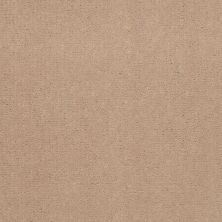 Patcraft Encore Collection Windsweptencore Brown Rice 00151_I0200