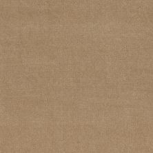 Patcraft Encore Collection Windsweptencore Whole Wheat 00157_I0200