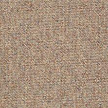 Philadelphia Commercial Queen Commercial Chart Topper II 12′ Bran Muffin 00721_J0131