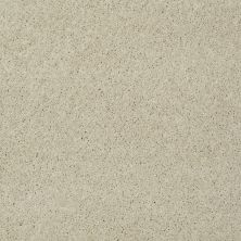 Shaw Floors St Jude Butterfly Kisses II Antique White 00151_JD301