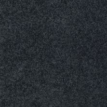 Shaw Floors St Jude Butterfly Kisses II Blue Slate 00451_JD301