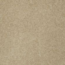 Shaw Floors St Jude Butterfly Kisses III Soft Ecru 00155_JD302