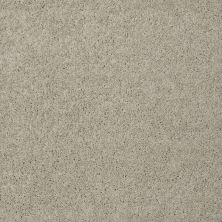 Shaw Floors St Jude Butterfly Kisses III Field Stone 00161_JD302