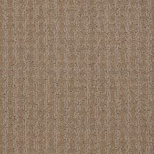 Shaw Floors St Jude Bold Attitude Wicker 00723_JD320