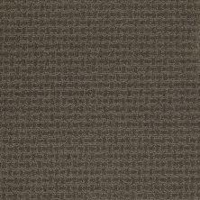 Shaw Floors St Jude Bold Attitude Cocoa 00732_JD320