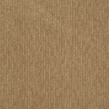 Shaw Floors St Jude Loving Cup Earth Tone 00751_JD322