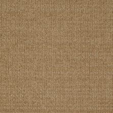 Shaw Floors St Jude Cupid's Arrow Earth Tone 00751_JD323