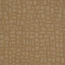 Shaw Floors St Jude Star Date Earth Tone 00751_JD324