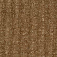Shaw Floors St Jude Star Date Cattail 00752_JD324