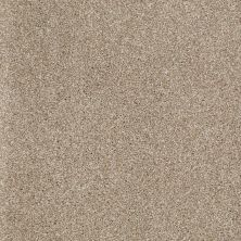 Shaw Floors St Jude Vacation Day Canvas 28703_JD325